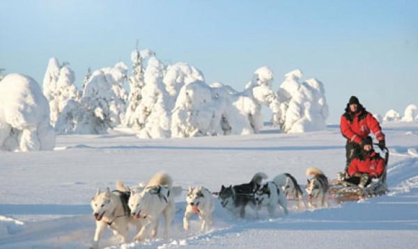 _data_pic_FIEXSA11_Finland_Saariselka_Huskysafari__5_uur_4_jpg.1435096800.600x400x90.thumb
